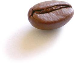 coffee_bean_single.jpg